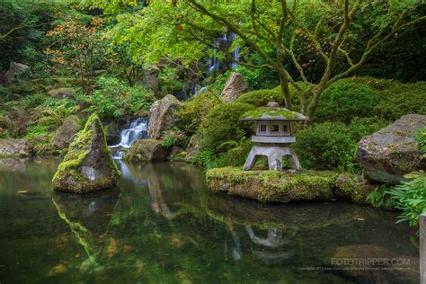 how to shoot portland japanese garden fototripper