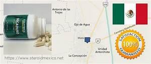 D U00f3nde Comprar Esteroides Anab U00f3licos En Las Tiendas En Matehuala  San Luis Potos U00ed  M U00e9xico