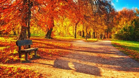 25+ Fall Wallpapers, Backgrounds, Images, Pictures