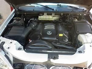 Boitier Ethanol Homologué Pour Diesel : troc echange mercedes ml 320 v6 essence ethanol w 163 sur france ~ Medecine-chirurgie-esthetiques.com Avis de Voitures