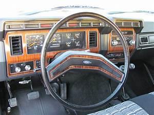 1983 Bronco Survivor