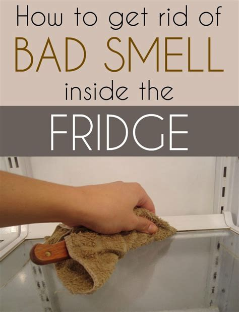 How to get rid of bad smell inside the fridge   Cleaning