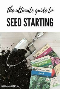 Ultimate Seed Starting Guide  How To Grow Seeds Into