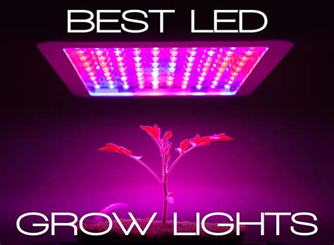 Best Indoor Grow Lights by Best Led Grow Lights Guide Be An Informed Buyer Updated