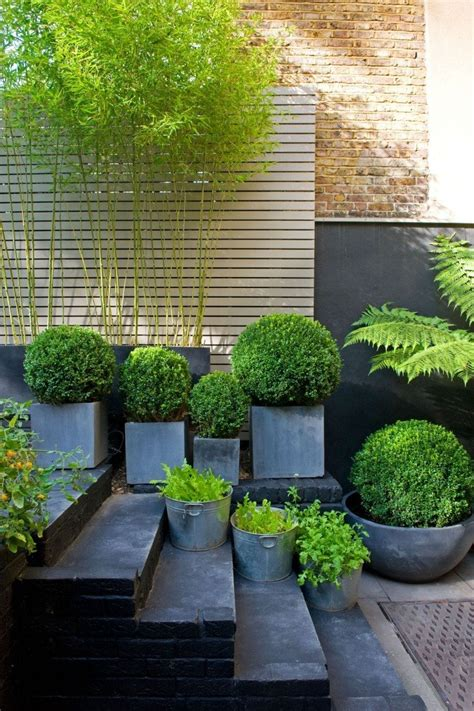 bamboo garden design ideas small garden ideas
