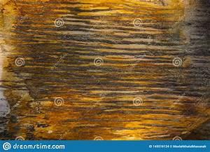 Farbe Mit H : h lzerne fossilien masern mit den gl nzenden und marmorbeschaffenheiten mit brauner farbe und ~ A.2002-acura-tl-radio.info Haus und Dekorationen