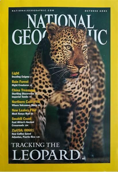 Geographic National Magazine Fox Forest Kenya Africa