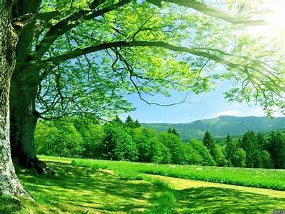 Nature Backgrounds Background Wallpapers Summer Landscape Resolution