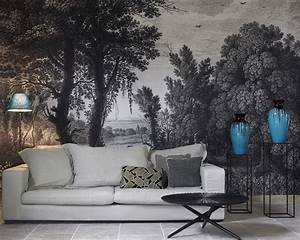 Papier Peint Ananbo : ananb campagne grisaille papier peint panoramique ananbo pinterest grisaille ~ Melissatoandfro.com Idées de Décoration