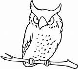 Owl Coloring Pages Flying Drawing Colouring Printable Getdrawings sketch template