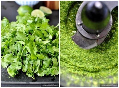 cuisiner le basilic sauce pesto 8 ingrédients qui peuvent remplacer le basilic