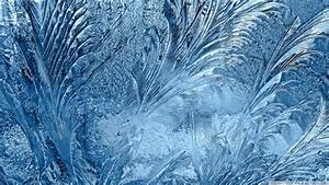 Download ice flowers on the window wallpaper