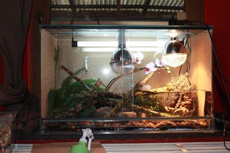 terrarium de mon iguane page 2