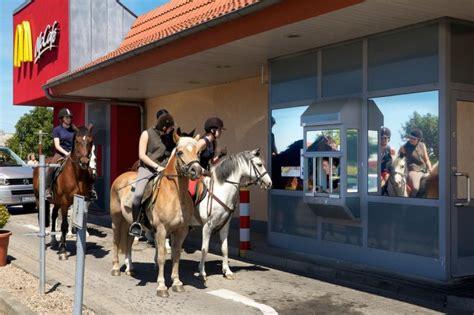 horse mcdonalds mcdonald baby