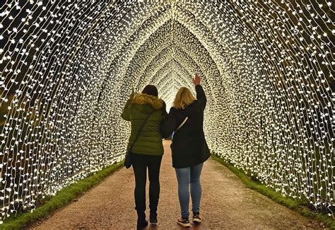 Bedgebury Christmas Lights puts tickets on sale with rides ...
