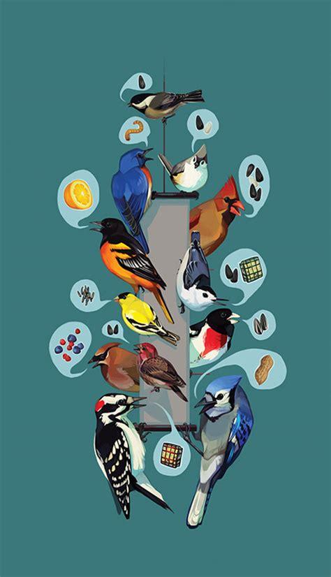 common feeder birds feederwatch