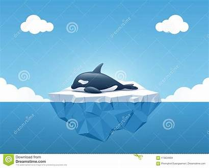 Whale Iceberg Orca Killer Underwater Ocean Above