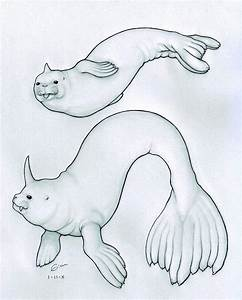 Seel and Dewgong by celloxiii on deviantART