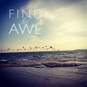Find, The, Awe, U2014, Jaredangaza, Com