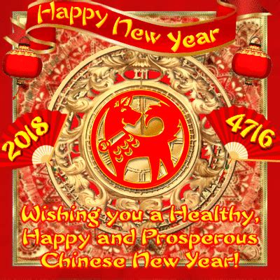 beautiful chinese  year  happy chinese