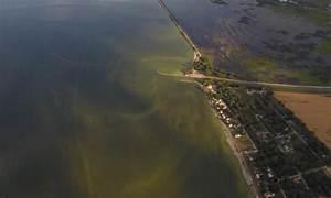 Kent State And NASA Team Up Against Algae Blooms In Lake ...