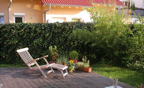 Sichtschutz Für Garten Und Terrasse by Sichtschutz F 252 R Garten Und Terrasse Tipps Hornbach