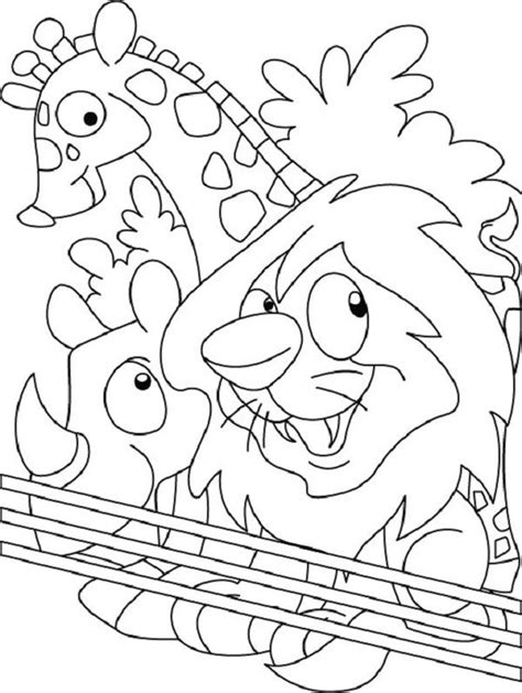 put    zoo coloring page coloring home