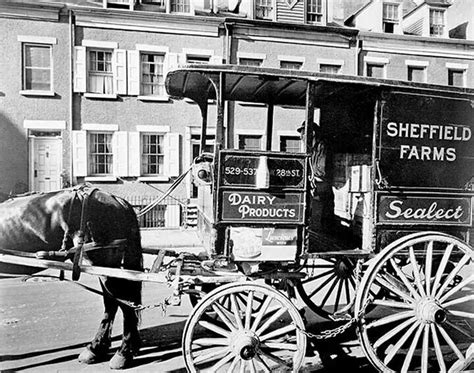 56 Best Horse Drawn Milk Wagons Images On Pinterest