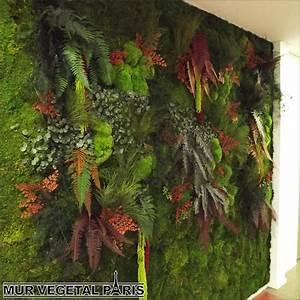 mur vegetal exterieur a faire soi meme evtod With faire un mur vegetal exterieur soi meme