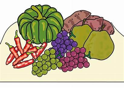 Clipart Harvest Autumn Scarecrow Fal Grape Vegetables