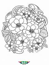 Coloring Flowers Flower Printable Tsgos Stunning Colouring Spring Rose Halloween January Axialentertainment sketch template