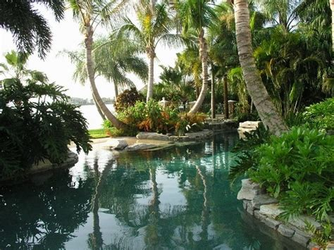pool tropical landscaping ideas tropical pools beautiful and exotic landscape ideas