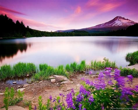 3d Nature Wallpaper Hd 1080p Free Download_ Hd Widescreen