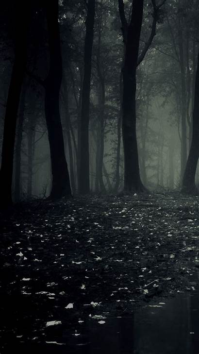 Dark Forest Phone Mobile Wallpapers Ultra Phones