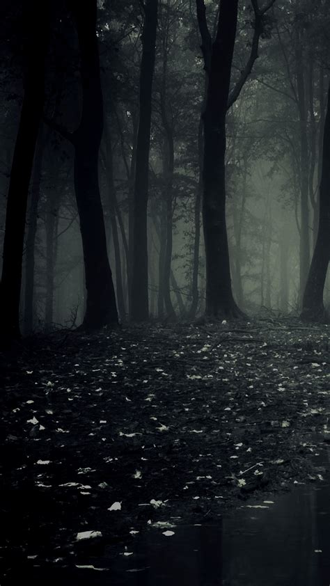 All of the dark wallpapers bellow have a minimum hd resolution (or 1920x1080 for the tech guys) and are easily downloadable by clicking the image and saving it. Ultra HD Dark Forest Wallpaper For Your Mobile Phone ...0358