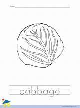 Cabbage Worksheet Coloring Banana Worksheets Vegetable Vegetables Flashcard Thelearningsite sketch template