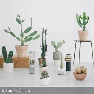 Grünpflanzen Für Innen : kaktus k benhavn urban jungle wohnen mit pflanzen ~ Eleganceandgraceweddings.com Haus und Dekorationen