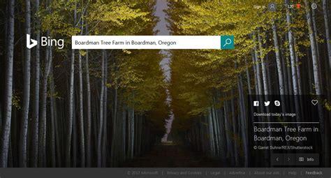 bing homepage spotlight boardman oregon webranking