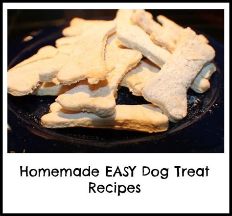 simple treats recipes 23 best images about good for dogs on pinterest pumpkins easy dog treat recipes and healthy