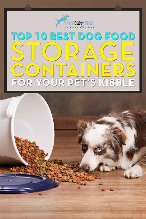 dog food storage container  huge review