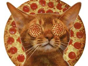 pizza cat pizza lunch gsepm