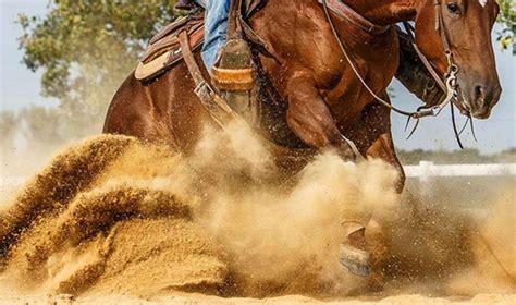 arkansas reining horse association ward ar