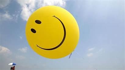 Happy Job Happiness Business Happier Study Having