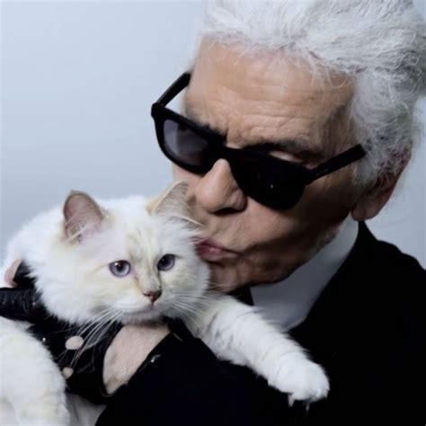 karl lagerfelds cat video popsugar fashion