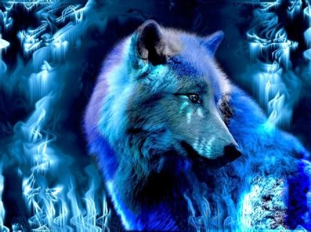 Blue Cool Wolf Wallpaper by Blue Wolf Abstract Background Wallpapers On