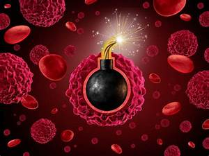 3 T-cell 'tricks' to activate your body's own cancer ...