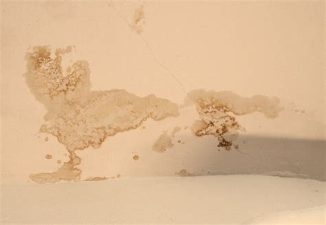 nasse wände sanieren nasse w 228 nde sanieren feuchte w nde und aufsteigende feuchtigkeit ahrens hoch schimmel feuchte