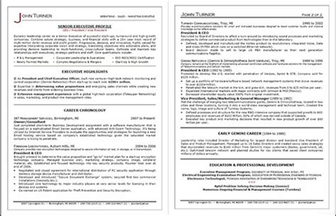 Executive Resume Service by In Depth Review Professional Resume Services Inc