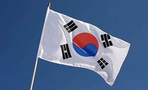 Hand Waving Flag South Korea