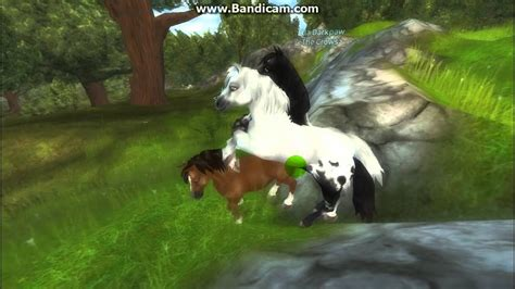 stable star ponies riding